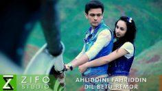 Ahliddini-Fahriddin—Dil-betu-bemor